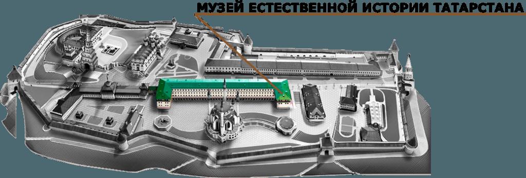 Musée histoire naturelle Kazan
